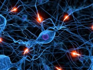 Rehabilitación neuropsicológica: ¿Merece la pena?