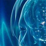 Qué es el Neurofeedback. Cómo y por qué funciona