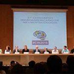 I Congreso Iberoamericano de Neuropsicología (Parte II)