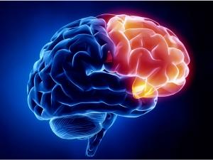 plasma-rico-plaquetas-neurorrehabilitacion