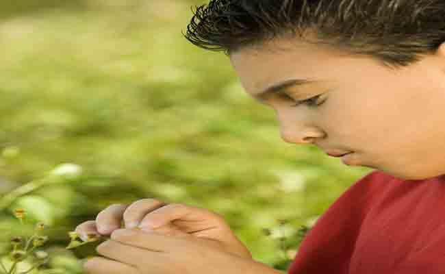 El Síndrome de Asperger desde el punto de vista de la neuropsicología