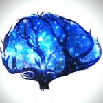 autismo y cerebro - Autism and the Brain