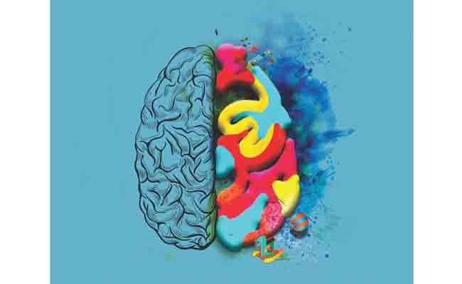 Te recomendamos un libro de neuropsicología infantil