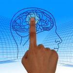 El Cerebro Sexual Neurociencia y diferencias ligadas al sexo - The Sexual Brain: Neuroscience and sex-related differences