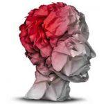 Traumatismo craneoencefálico y su rehabilitación neuropsicológica en funciones ejecutivas