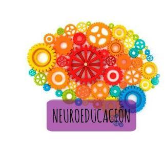 Resultado de imagen de neuroeducación