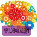 Un nuevo reto educativo: ¿Cómo funciona el cerebro de un niño?