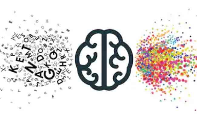 Evaluación y rehabilitación neuropsicológica en las afasias