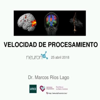 """lentitud en el procesamiento de la información Dr. Marcos Ríos addressessome of the unanswered questions from his presentation""""Slow processing speed"""""""