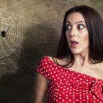 Cerebro y fobias - Phobias and the brain