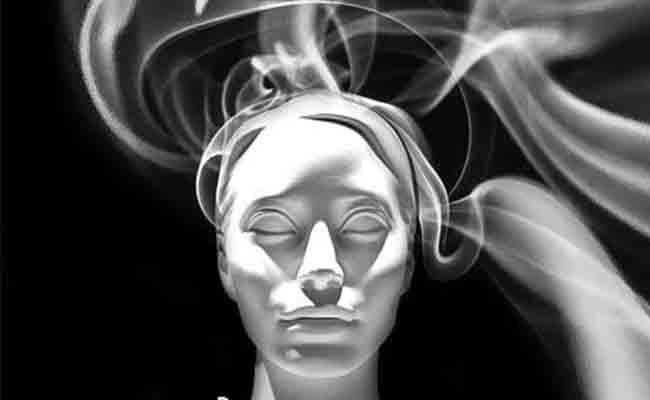 El fenómeno de la confabulación (Vol. I): clasificaciones, neuropatología y mecanismos cognitivos