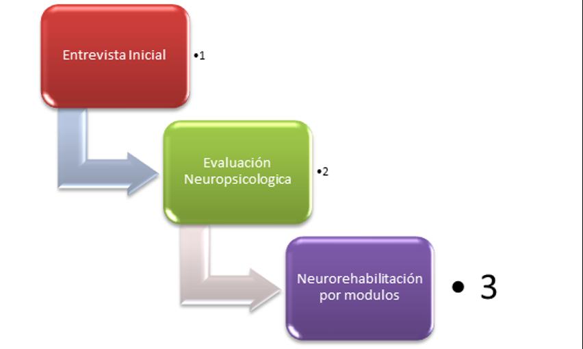 clínica neuropsicológica, módulos de entrenamiento neuropsicológicos