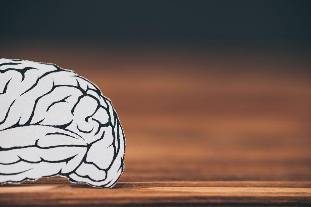 La memoria: definición, tipos, ejercicios y evaluación