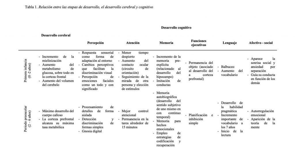 Tabla sobre la relación entre las etapas de desarrollo, el desarrollo cerebral y cognitivo
