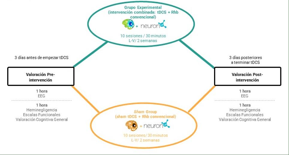 Grupos de intervención y método del proyecto tDCS-Neglect.